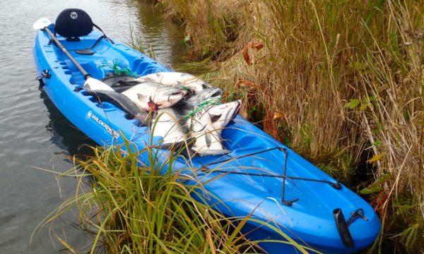 Olga-Creek-Fishing-Lodge-Alaska-Vacation24