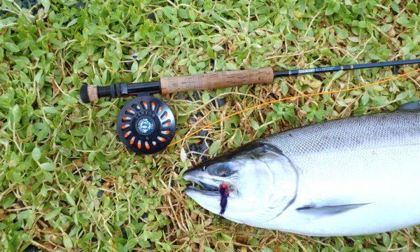 Olga-Creek-Fishing-Lodge-Alaska-Vacation25
