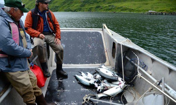 Olga-Creek-Fishing-Lodge-Alaska-Vacation31